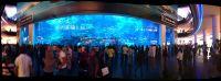 Dubai Aquarium Small